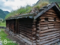 Green Roof at Borgund Stave Church
