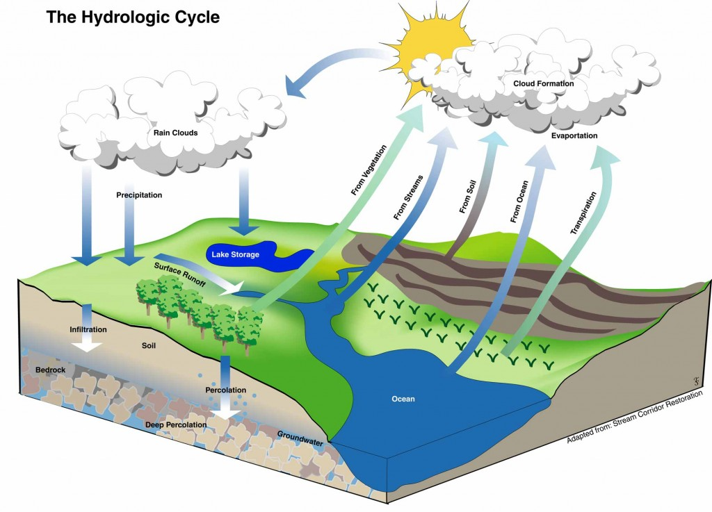 The metropolitan field guide the hydrologic cycle the the importance of water ccuart Images