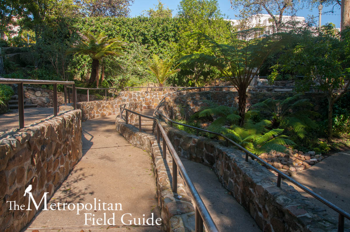 Zoro Garden and Desert Garden, Balboa Park
