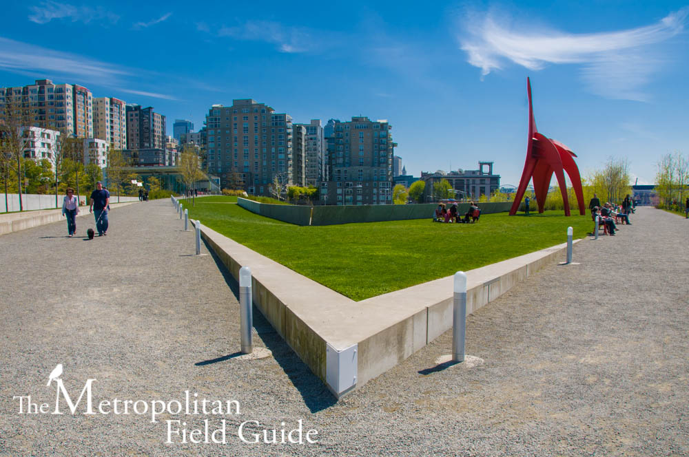 Art Meets Habitat:: The Olympic Sculpture Park