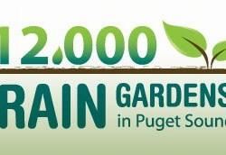 12,000 Rain Gardens in Puget Sound Campaign