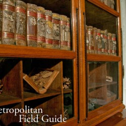 Native Plants and Wildlife Gardens Post:: The Strahov Monastery Dendrological Library