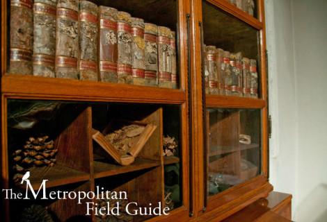 The Strahov Monastery Dendrological Library