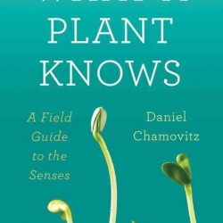 Native Plants and Wildlife Gardens Post:: What A Plant Knows