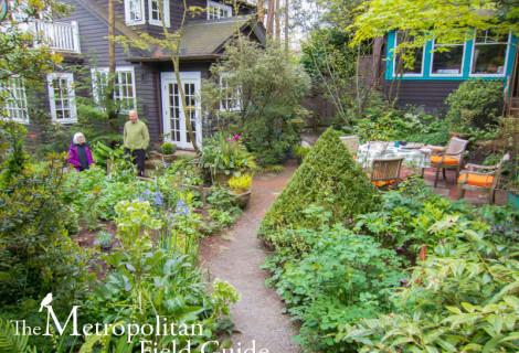 The Urban Garden of Keith Geller