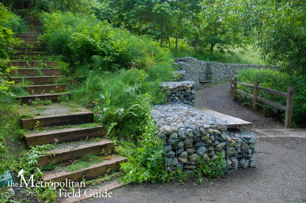 History and Habitat at Thomas Wales Park