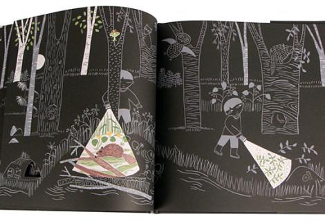 Nature Picture Books:: Lizi Boyd