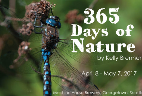 365 Nature Photography Show