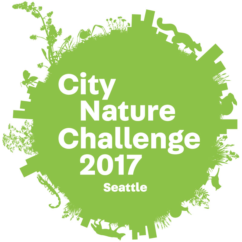 Seattle City Nature Challenge