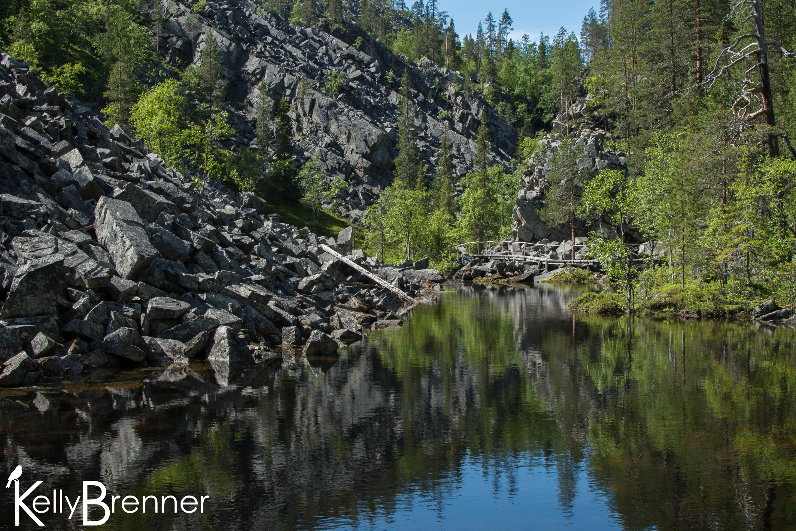 Field Journal: Pyhä-Luosto National Park – Part 2