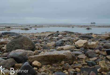 Field Journal: Churchill – Twin Lakes to Bird Cove