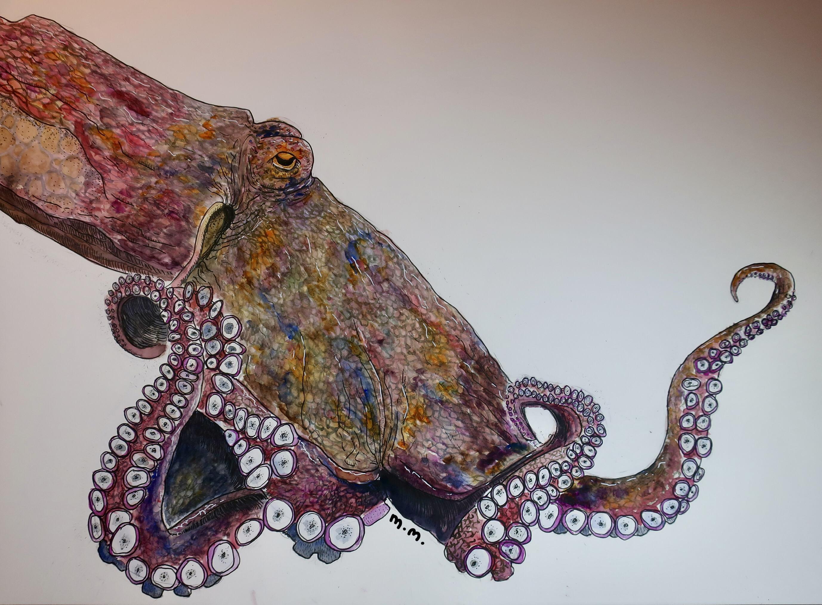 Artist Profile: Elizabeth Mills