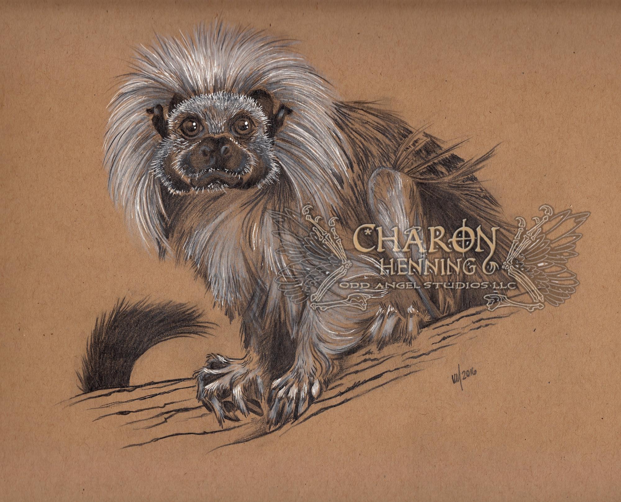 Artist Profile: Charon Henning