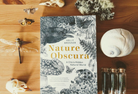 Nature Obscura Talk With Lyanda Lynn Haupt