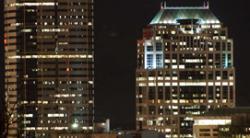 City Lights and Urban Wildlife