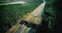 North American Wildlife Crossing Structure Design Competition