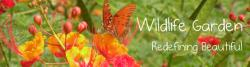 Guest Post at Beautiful Wildlife Garden